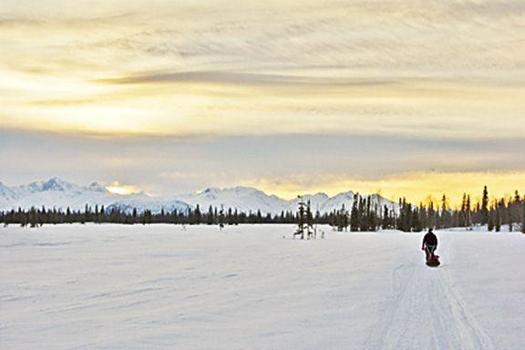Iditarod Trail Invitational